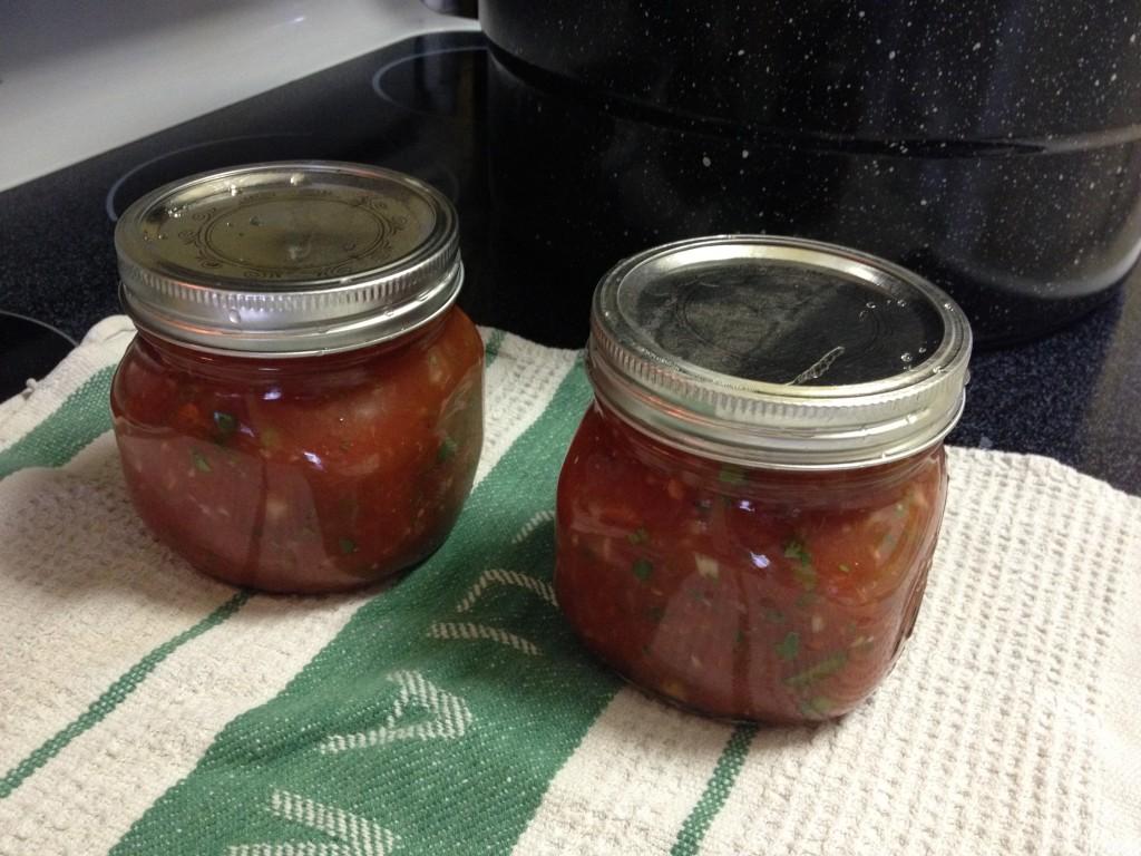 Canning Homemade Fresh Salsa | Ground Control to Major Mom