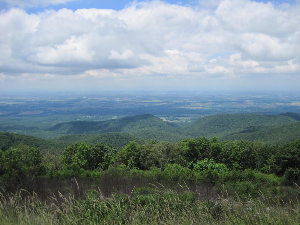We took a detour on the drive northward and took some of Skyline Drive in Virginia's Shenandoah National Park.