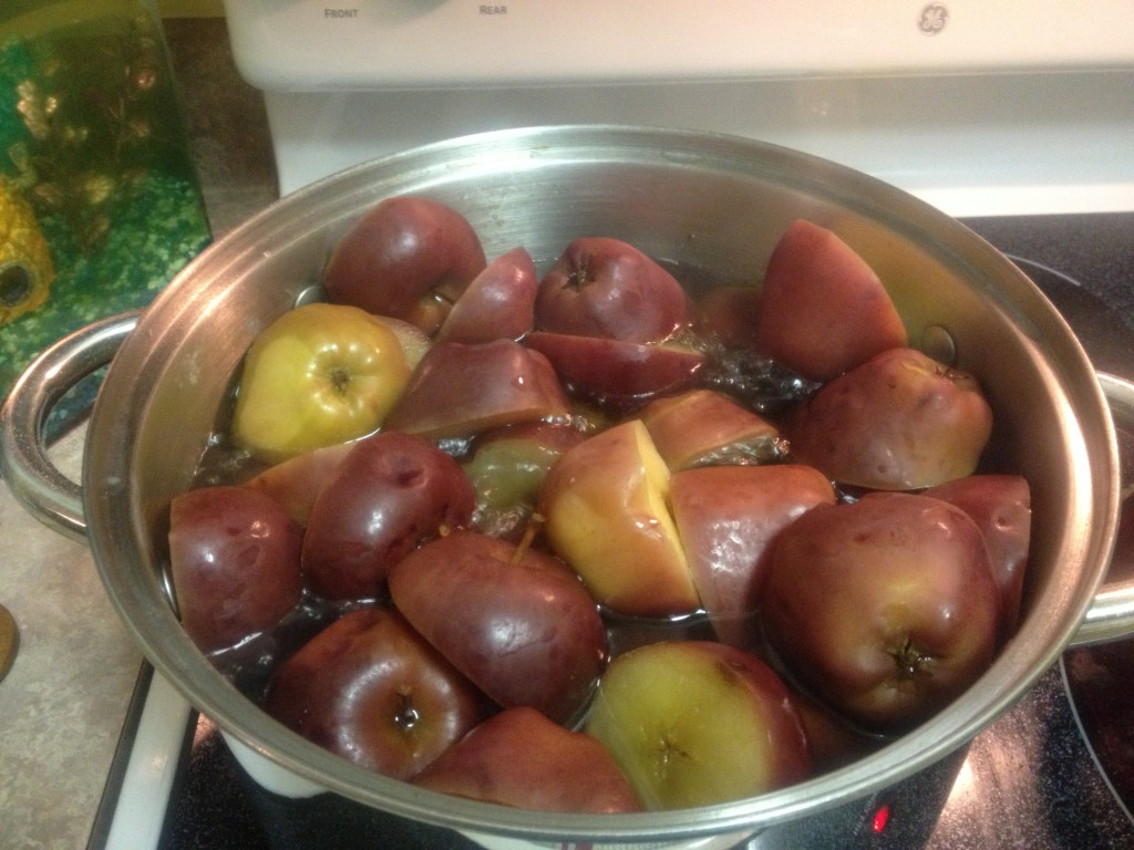 When life gives you apples, make APPLESAUCE!