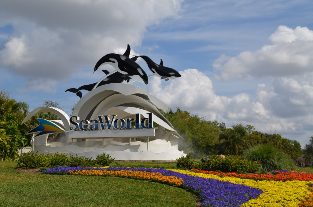 Welcome to Sea World!