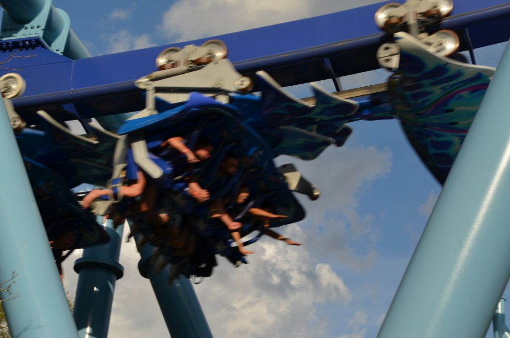 This is the Manta coaster over our heads. You ride as if you're flying super-hero style.