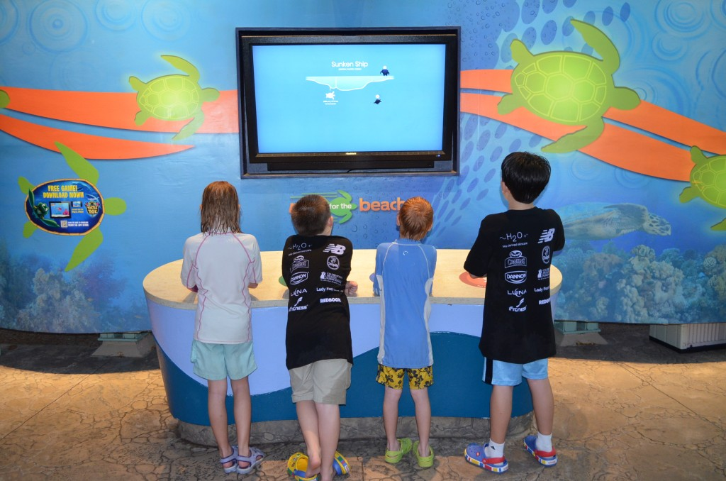 "Build a video game, they will come. This was a ""Rescue the Sea Turtles"" type of game."