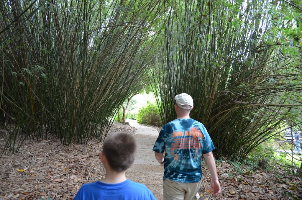 Heading towards the Asian garden.