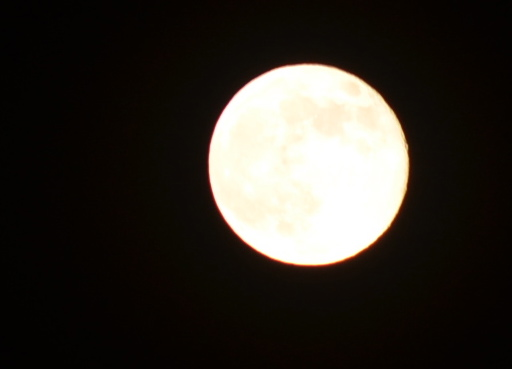 "The best I could do with the June 23rd ""Supermoon"" over the sky of northern New Mexico."