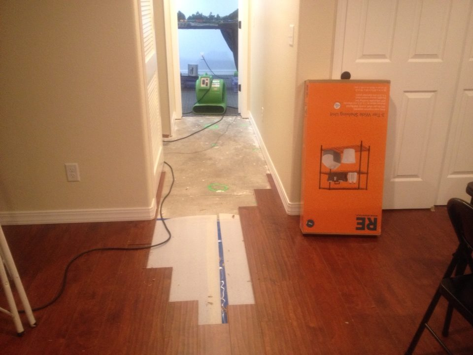 We had to re-accomplish the hallway flooring. We did some fancy Tetris-ing to do it without pulling up the glued-in baseboards.