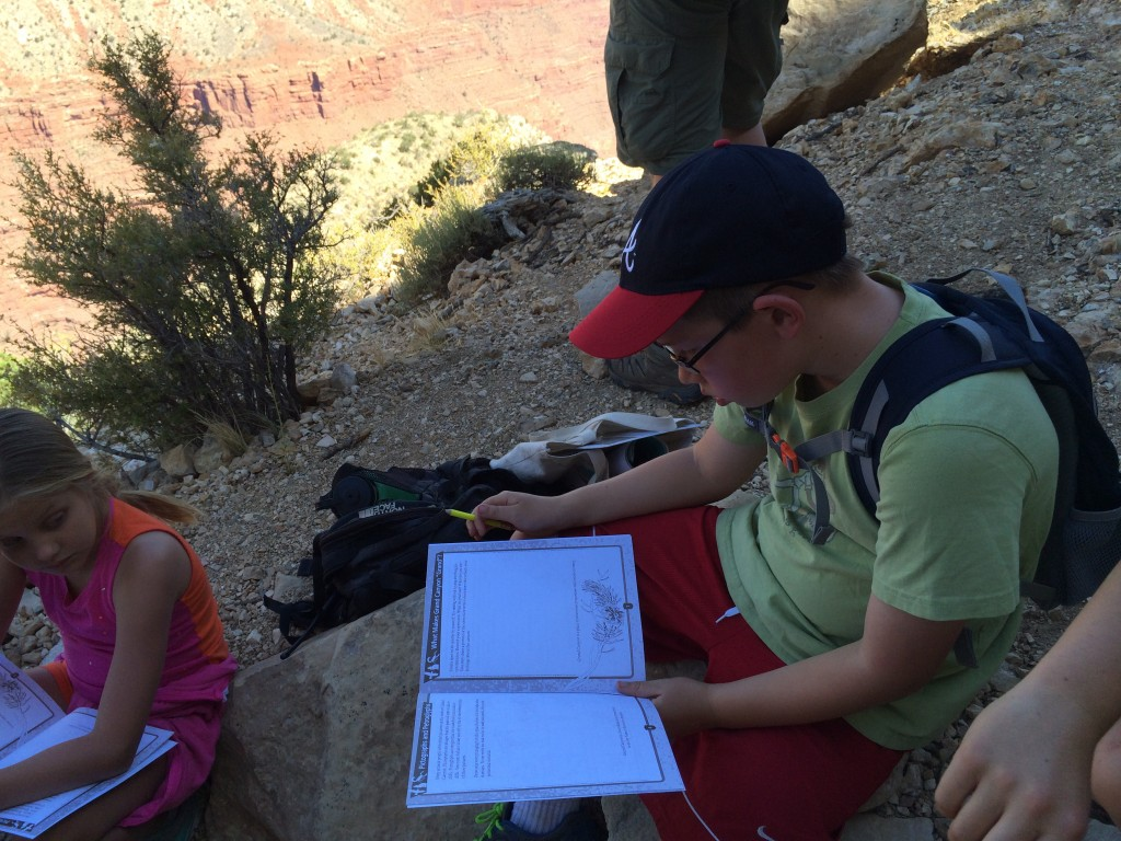 Timmy working on his Junior Ranger workbook.