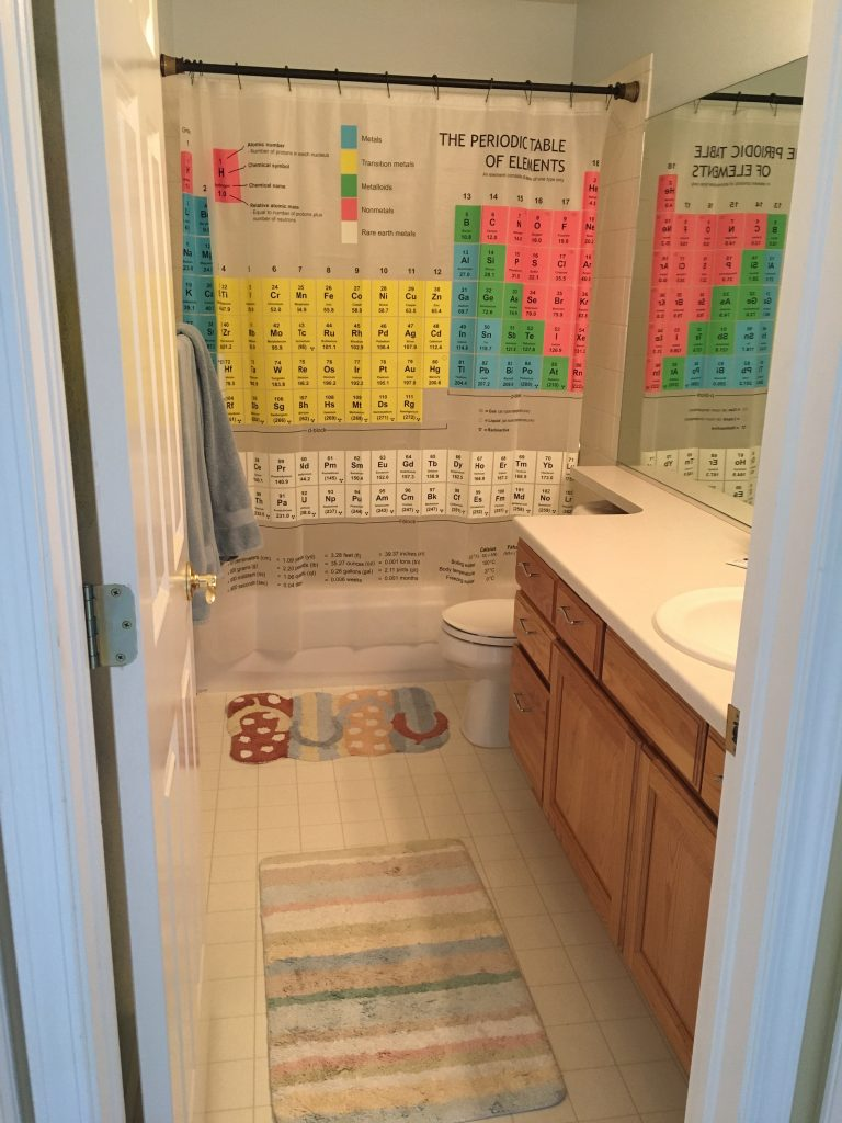 The boys' bathroom. It's also the guest bath, since the guest bedroom is right next door.
